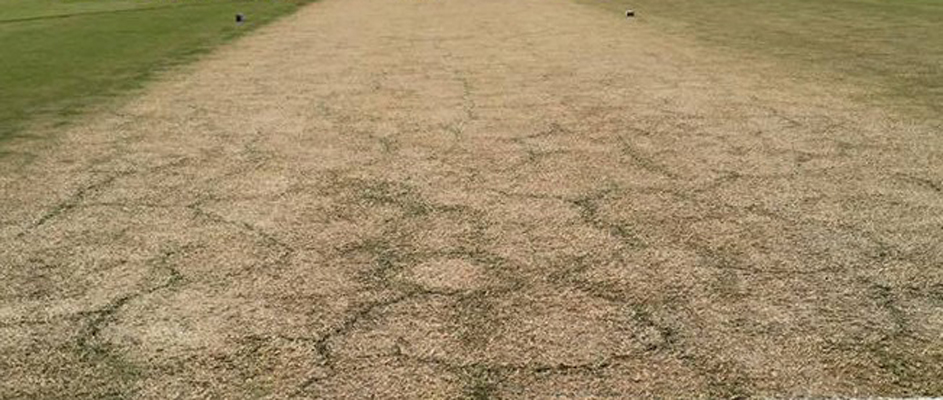 England vs India 4th Test Pitch Report